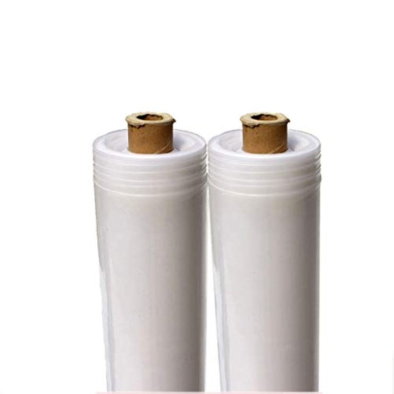 シンプトン境界絶滅した防塵厚手の透明プラスチックフィルムターポリン、レインプルーフ防湿アンチエイジング強い引き、屋外のフィルムカバー、マルチサイズ (Color : 2m wide, Size : 10m long)