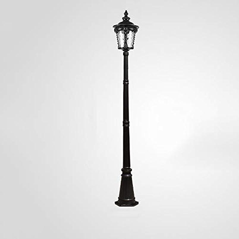 抜け目のない急いで採用Pinjeer ヨーロッパヴィンテージe27ガラス単極風景ポストライトアンティーク防水屋外ダイキャストアルミ街路灯芝生コミュニティ道路装飾パスウェイライト柱ランプ (Color : Black, サイズ : Height 3m)