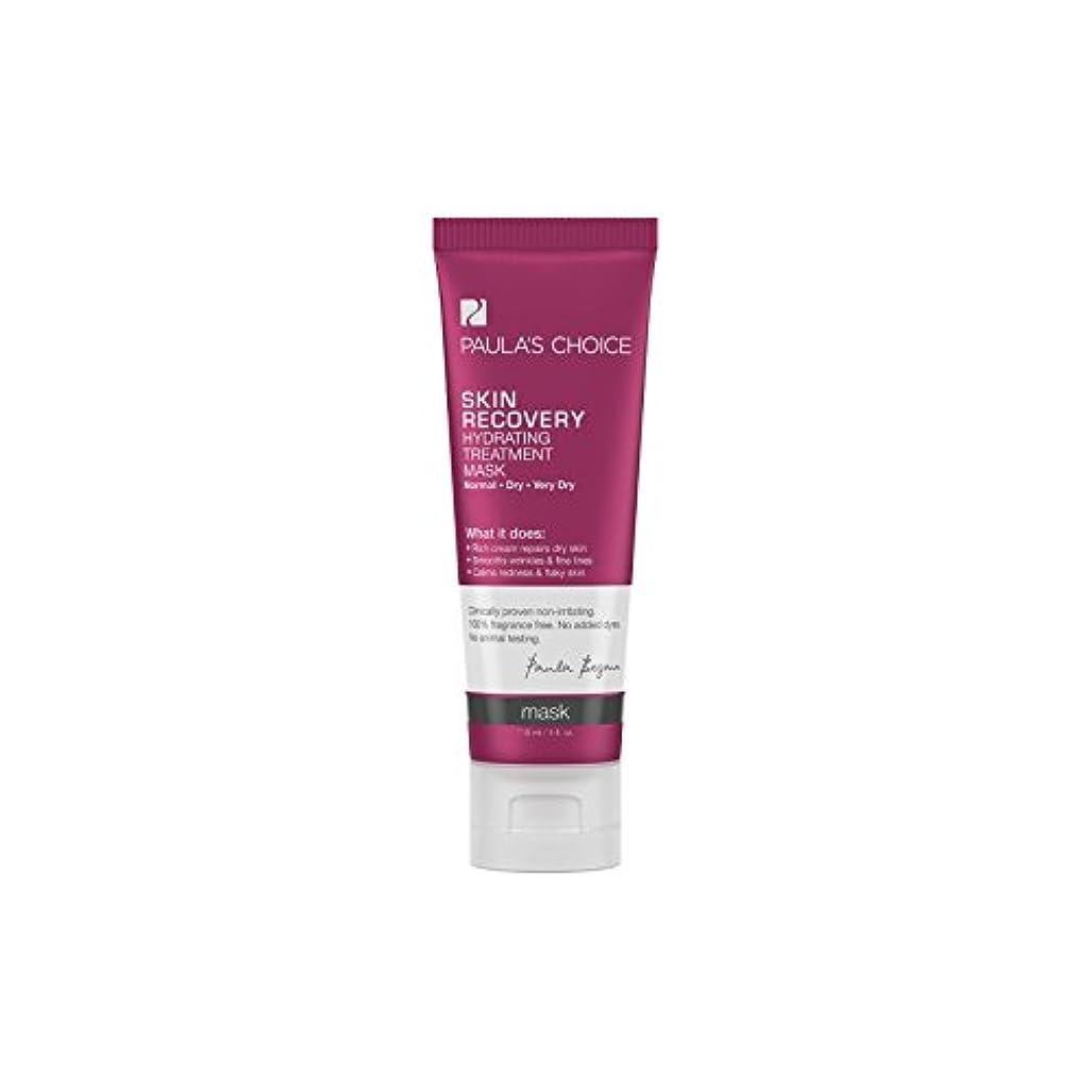 参照建築家不安定なPaula's Choice Skin Recovery Hydrating Treatment Mask (118ml) (Pack of 6) - ポーラチョイスの肌の回復水和処理マスク(118ミリリットル) x6...