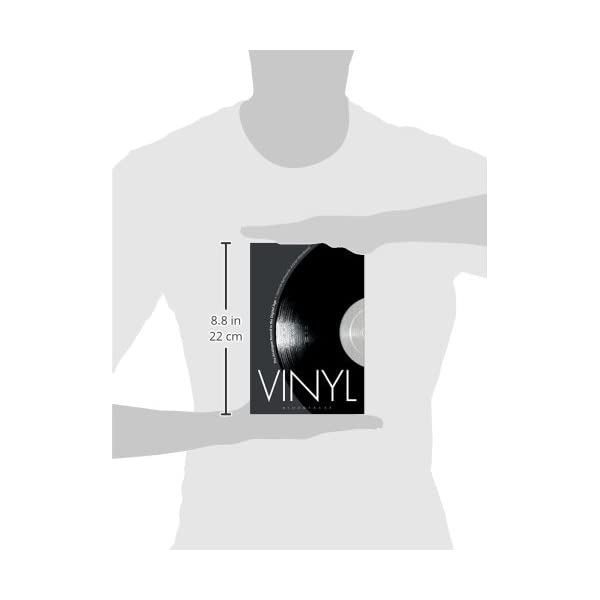 Vinyl: The Analogue Rec...の紹介画像3