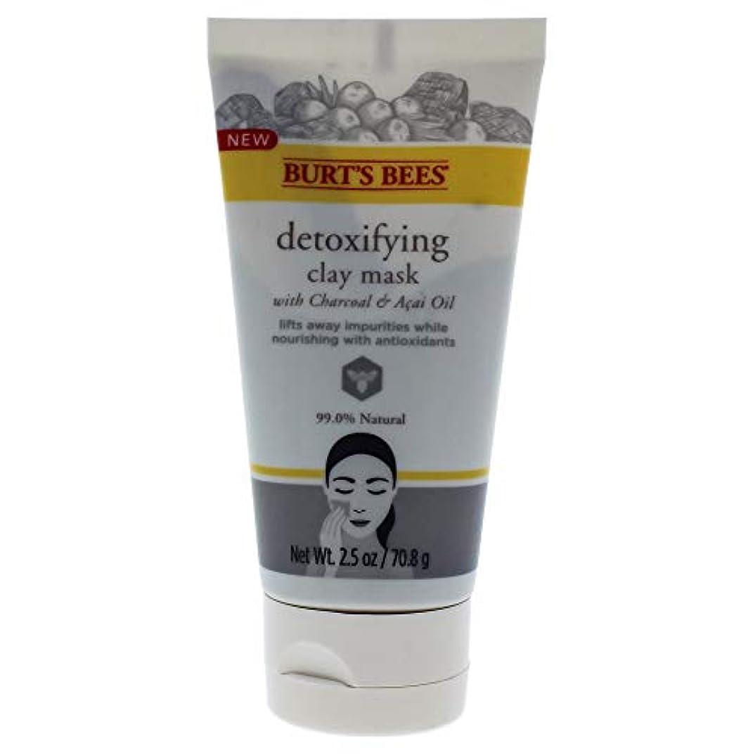 啓示水銀のつぶやきDetoxifying Clay Mask