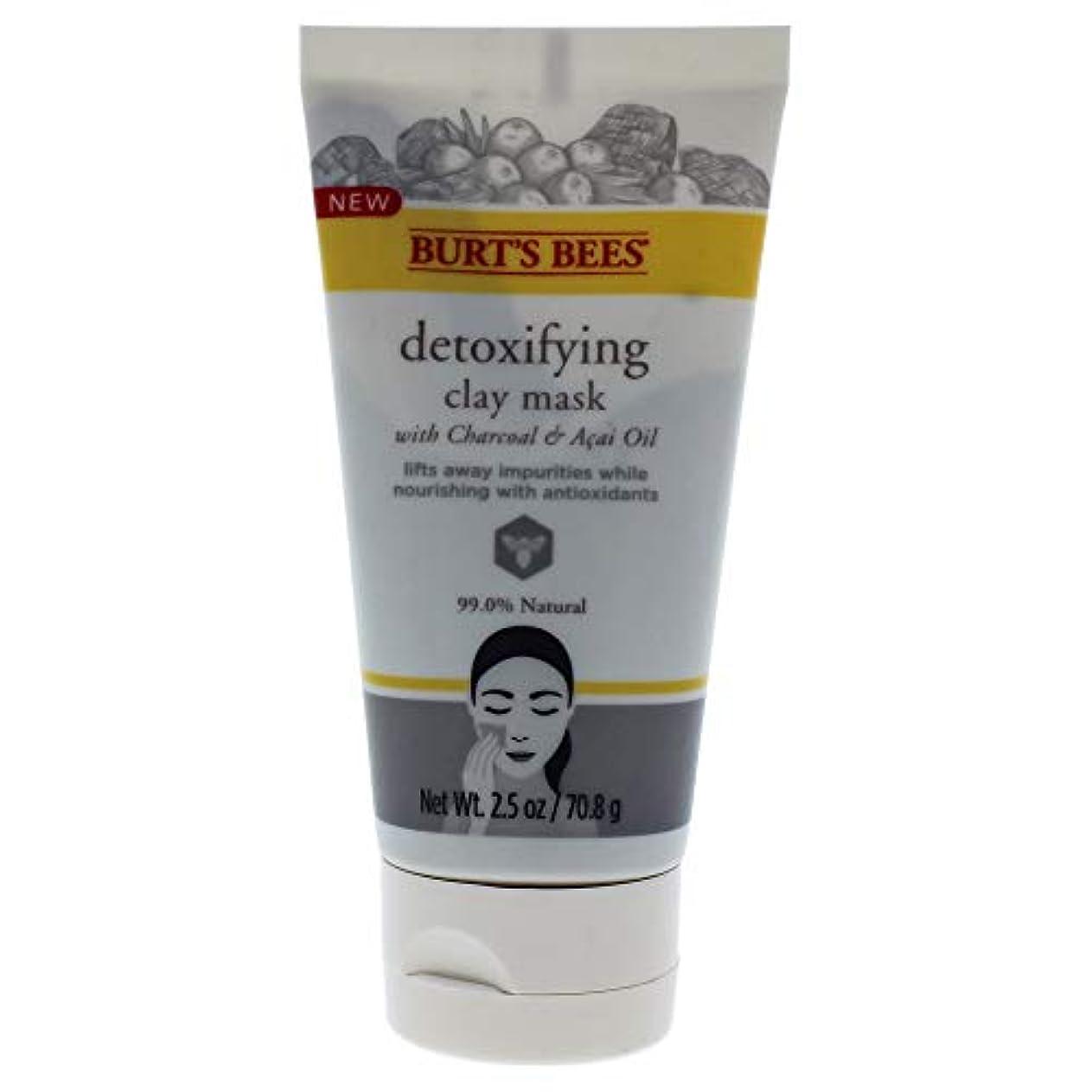 歴史的成長する折り目Detoxifying Clay Mask
