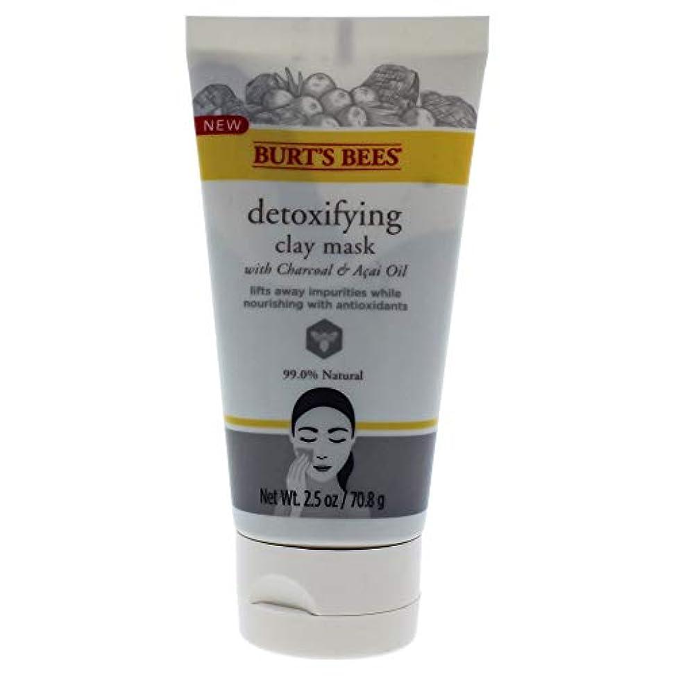 崇拝する錫荒らすDetoxifying Clay Mask