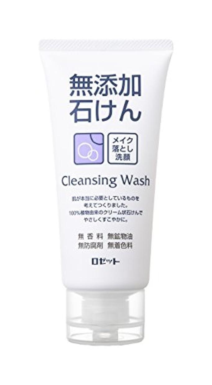 パケット全国品種無添加メイク落し洗顔フォーム120g
