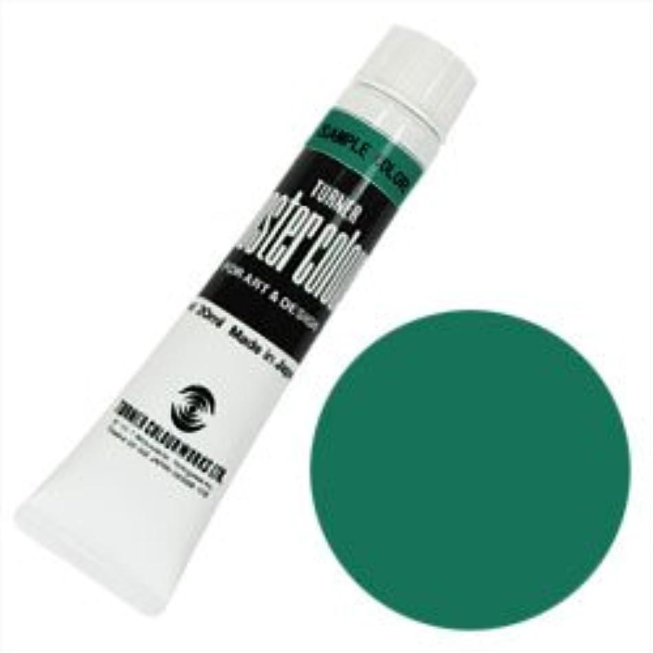 熟考する想像力豊かな振り子ターナー ポスターカラー 11ml ミドルグリーン