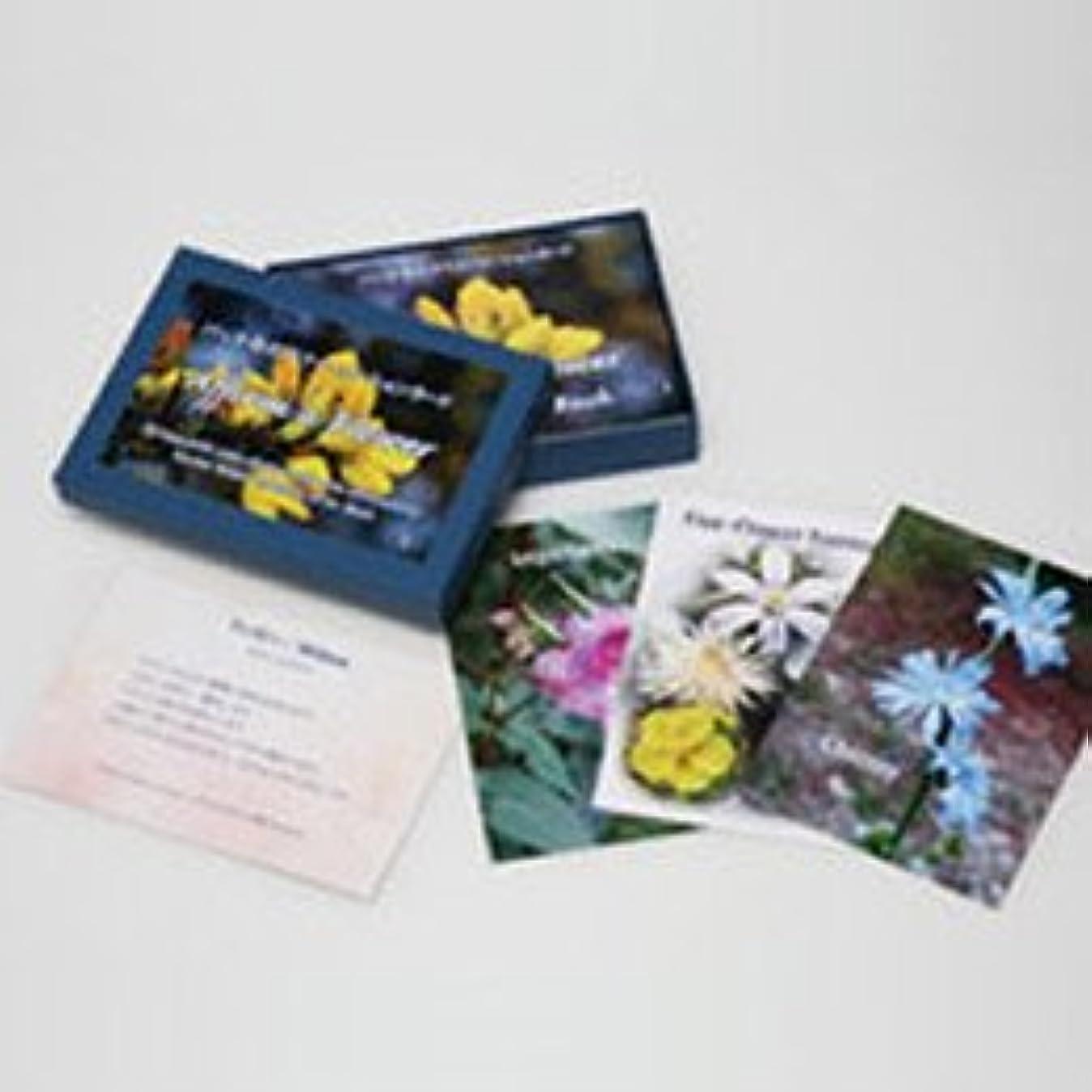 付き添い人憎しみ死ぬバッチアファメーションカード(38枚) 日本国内正規品