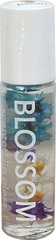 口メーターバングBlossom リップグロス ラズベリー BLLG6