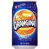 サントリー オランジーナ 340ml缶(24本入×2ケース)