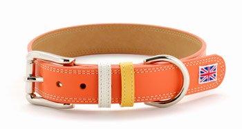 大型犬用首輪 大型犬 犬 首輪 犬の首輪 革 皮 おしゃれ かわいい 30mm幅