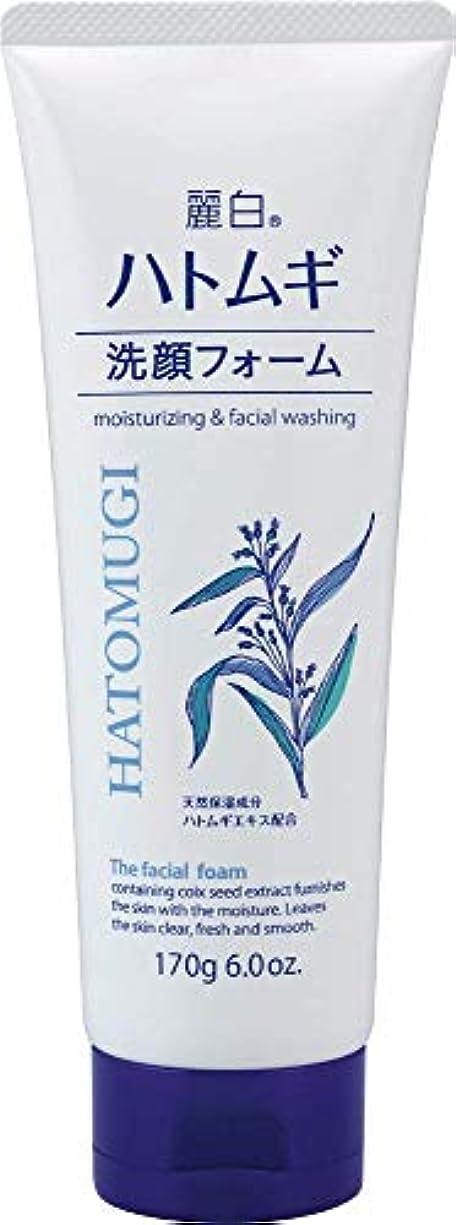 模倣追放路地麗白 ハトムギ洗顔フォーム170G × 24点