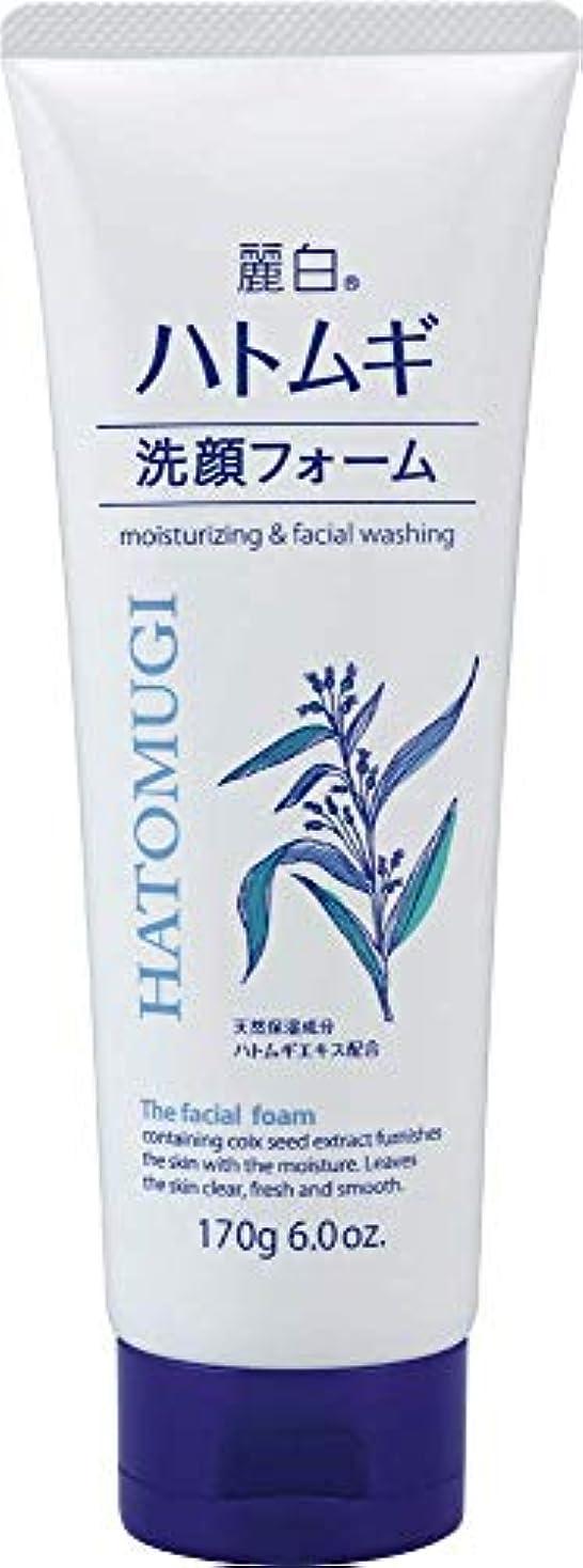 嬉しいですボイド弱める熊野油脂 麗白 ハトムギ洗顔フォーム 170g 4513574029590