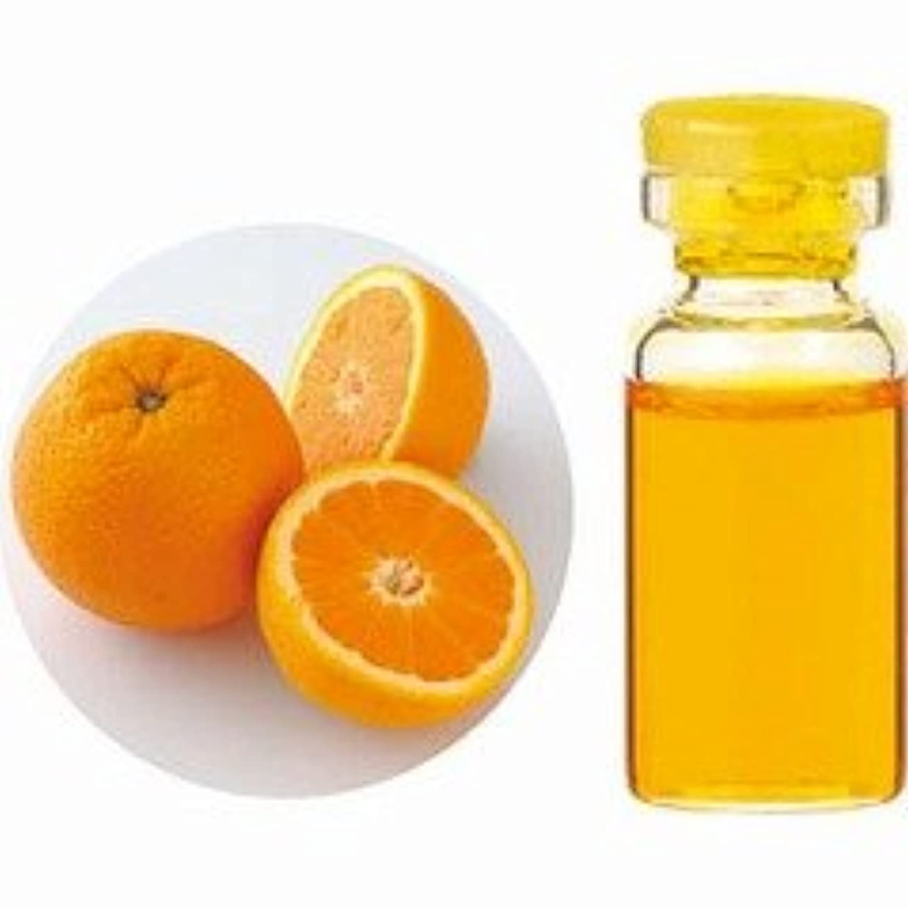 マイクプログレッシブリングバックエッセンシャルオイル(精油) オレンジスイート 10ml 【生活の木】