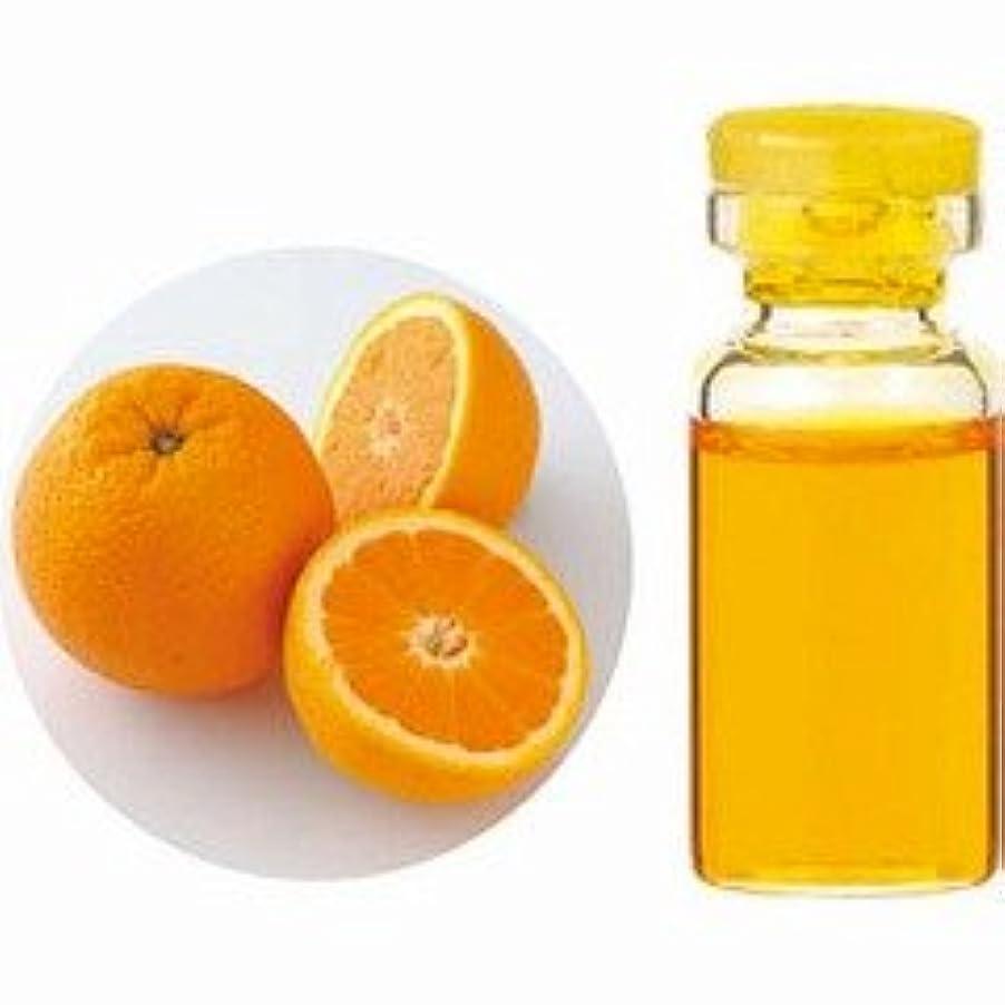 主観的やむを得ないワームエッセンシャルオイル(精油) オレンジスイート 10ml 【生活の木】
