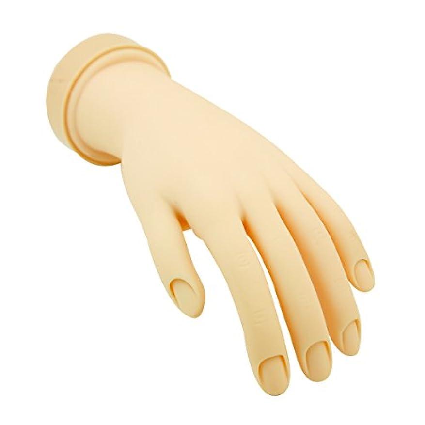 回転するバズ大洪水トレーニングハンド (ネイル用) 左手 [ 練習用マネキン 手 指 ハンドマネキン マネキン 施術用 トレーニング ]