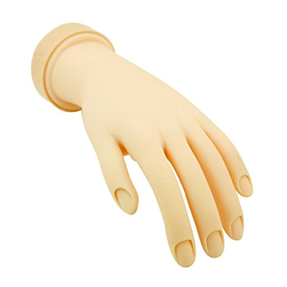 論理遊び場アクセルトレーニングハンド (ネイル用) 左手 [ 練習用マネキン 手 指 ハンドマネキン マネキン 施術用 トレーニング ]