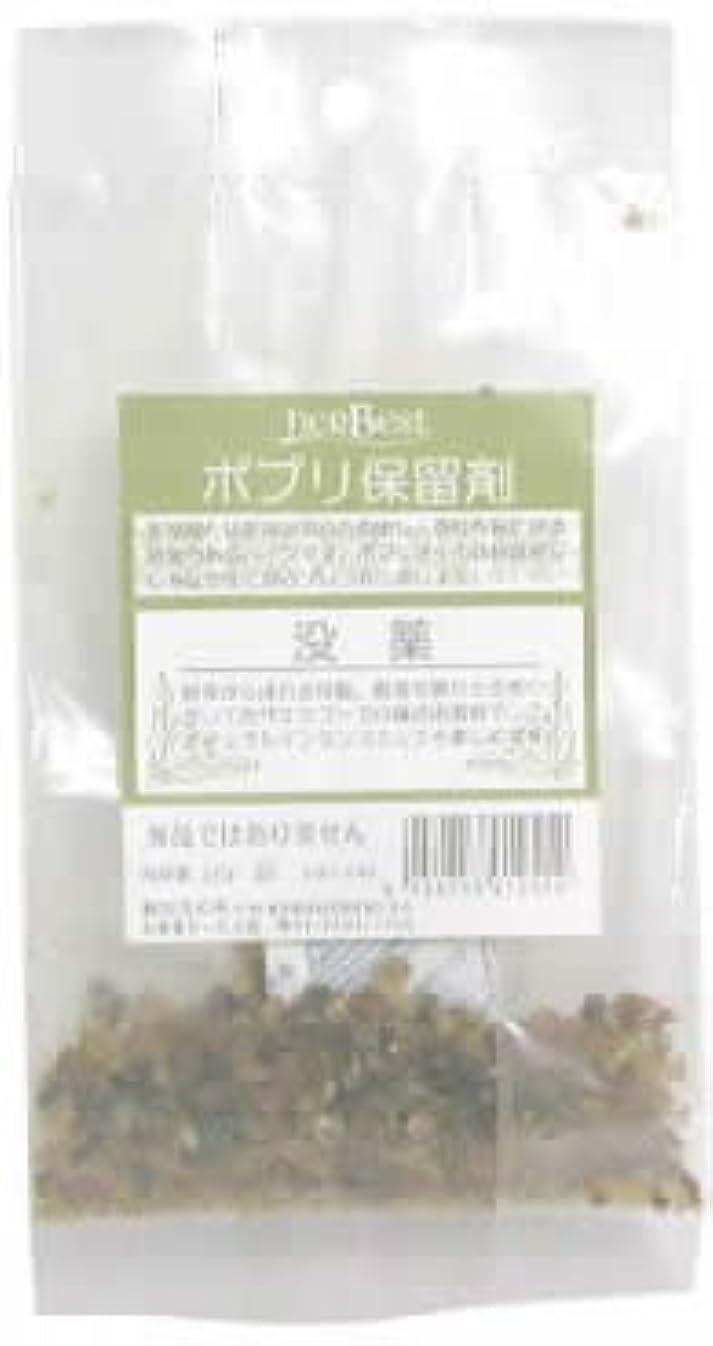ブラウズ順応性のある老人生活の木 没薬(ミルラ) 20g