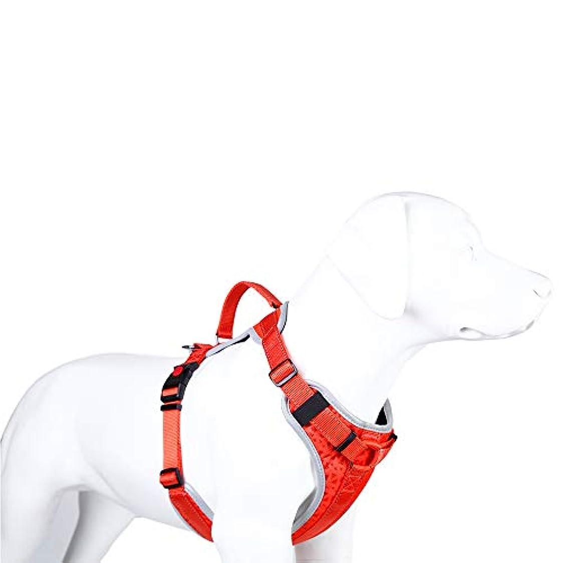 ベース論争氷反射犬用ハーネスペットソフト&快適なベスト、犬用のナイロン調整可能トレーニングハーネス(胸囲70-80cm)