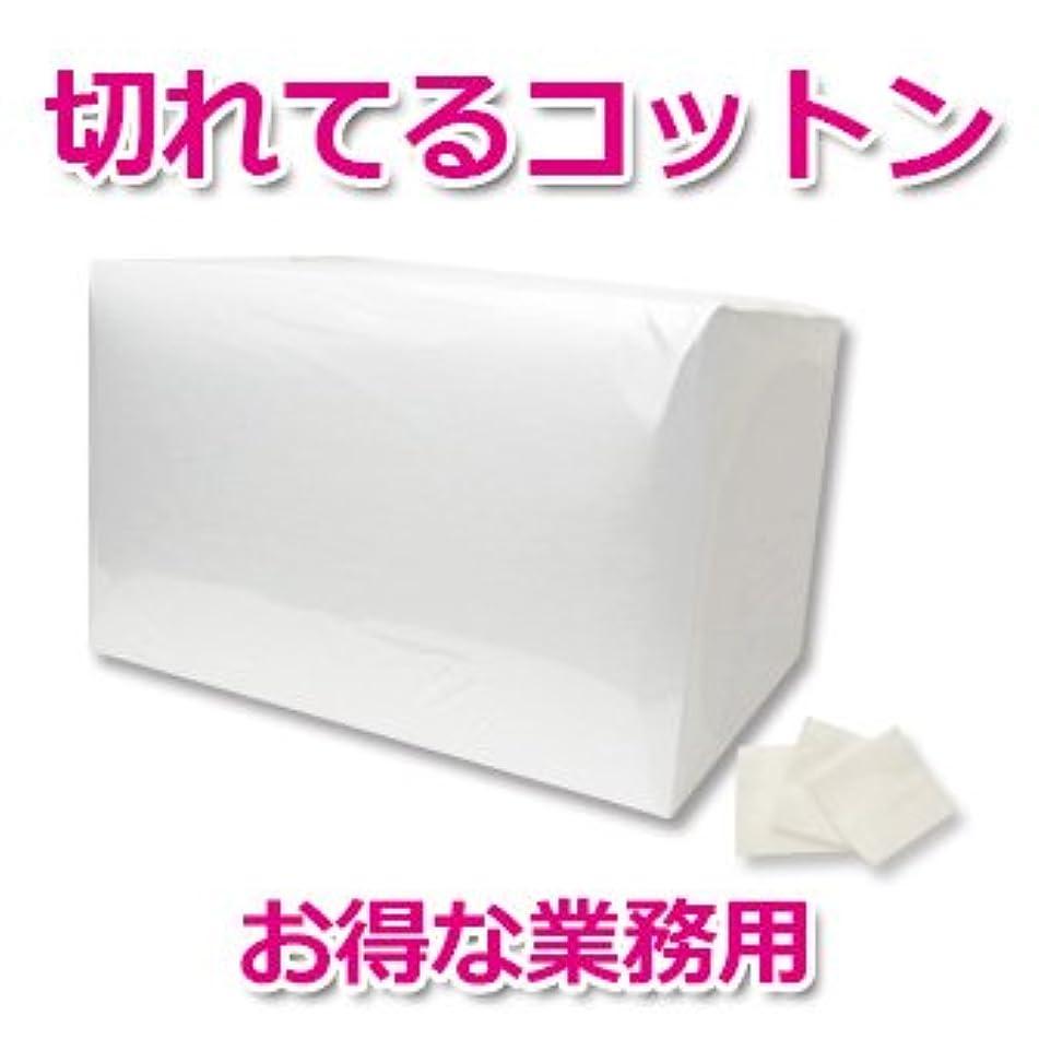 バスルーム製造九月【3号】業務用コットン カットメン500g 切れてるコットン