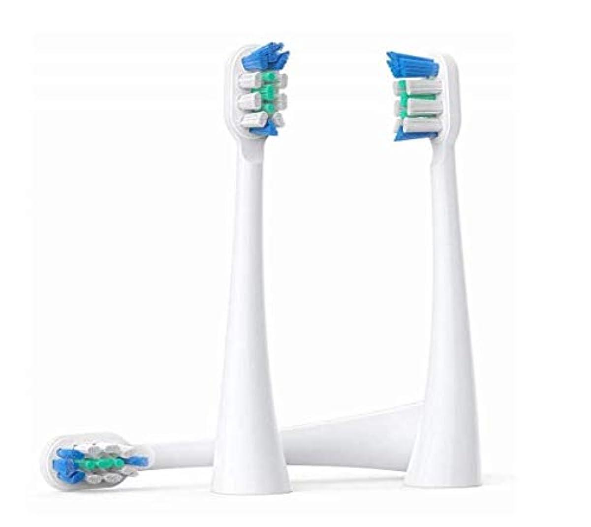 科学主せっかち交換用ブラシヘッド、パーソナルケア用の口腔歯ブラシをクリーニングするプレミアムクリーンブラシヘッド、3個