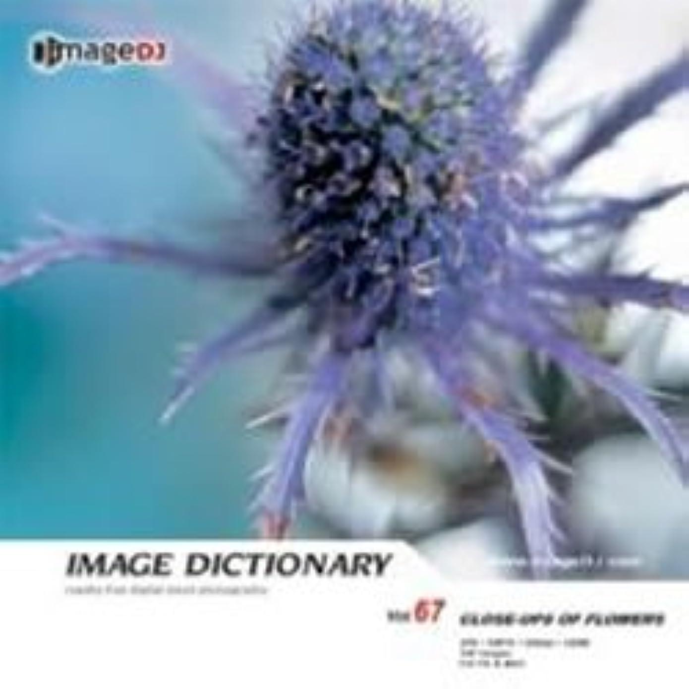 無限大実行インデックスイメージ ディクショナリー Vol.67 花の接写