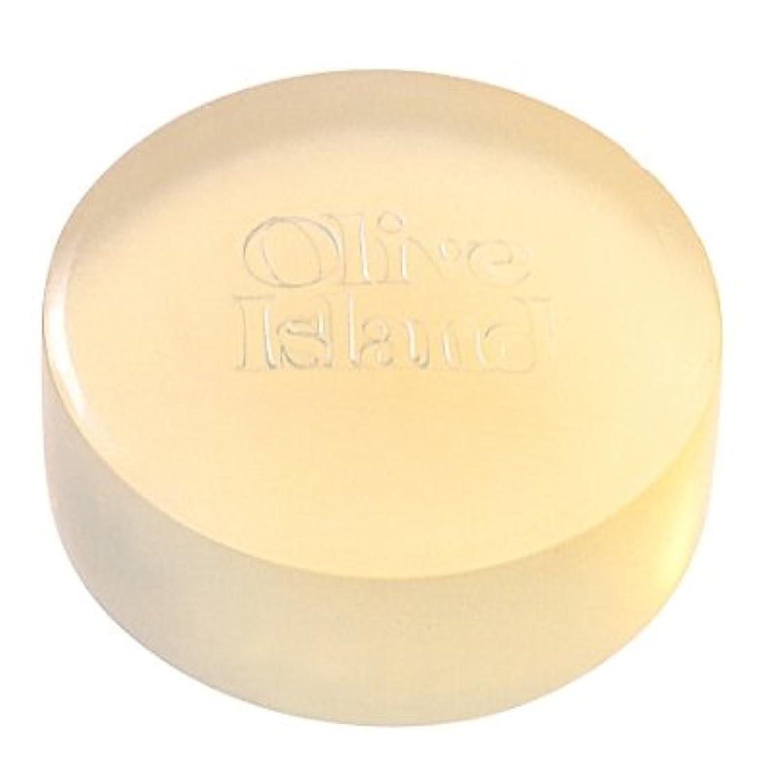 偶然緩やかな白い東洋オリーブ バージンオイルソープ90g