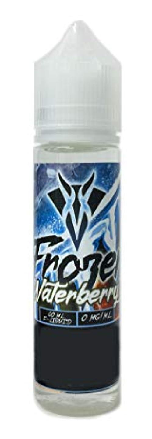袋口述ルアーVANGO VAPES 電子タバコリキッド60ml Frozen Waterberry(フローズン ウォーターベリー)