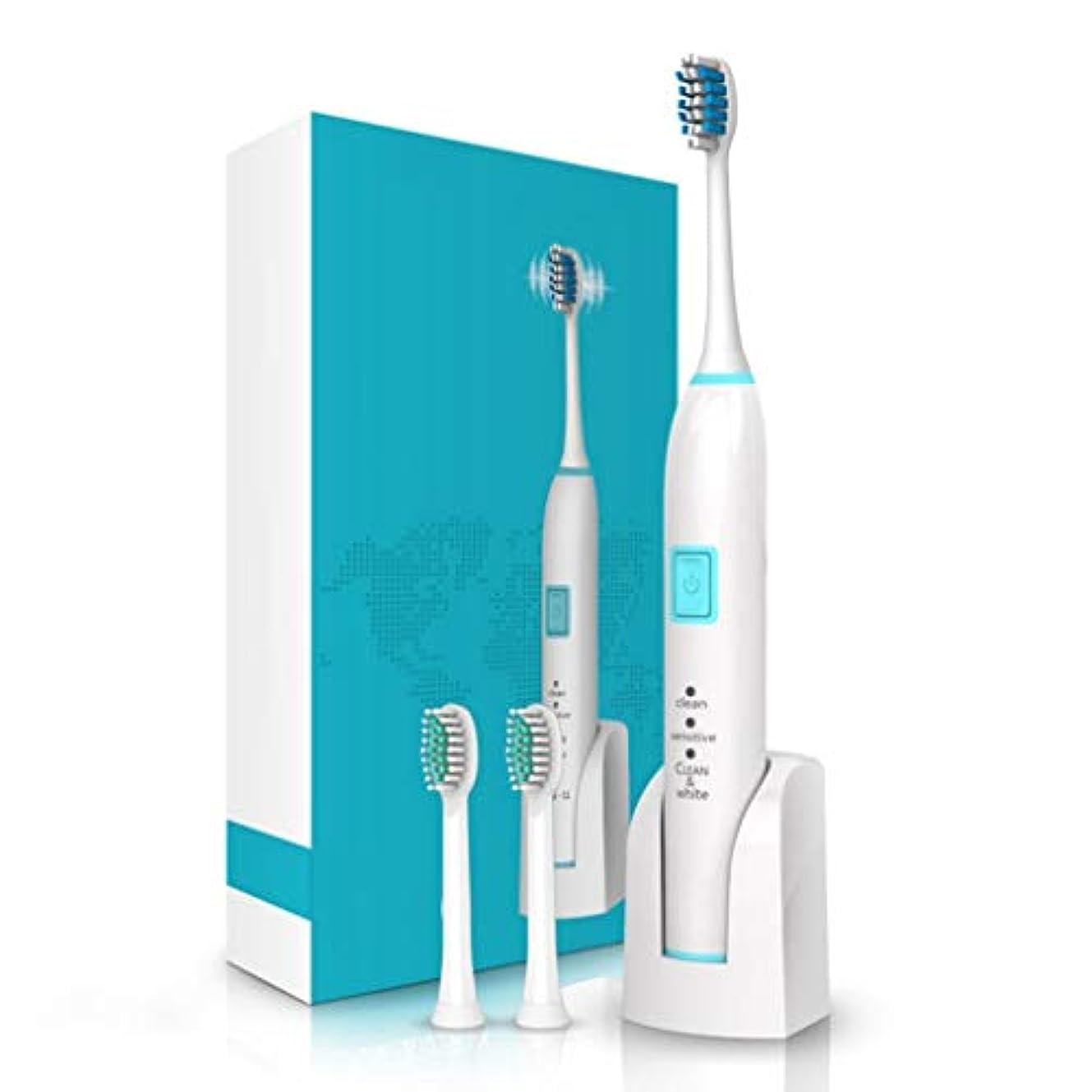製油所ガチョウ置き場電動歯ブラシ2分のスマートタイマー2の取り替えの頭部が付いている歯科医の音波の歯ブラシのようにきれいな歯は十分に洗濯できる