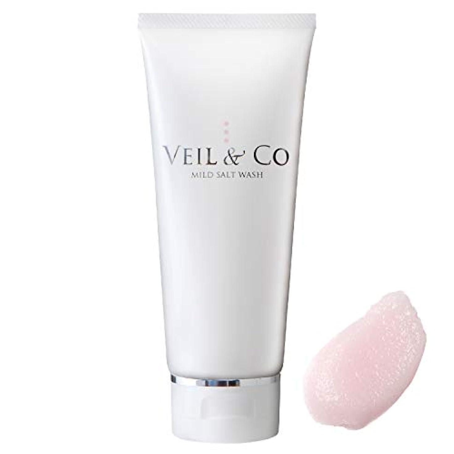 混乱した準備するくぼみ【VEIL&Co】ベールアンドコー 毛穴専用マイルドソルトウォッシュ(洗顔料) 150g