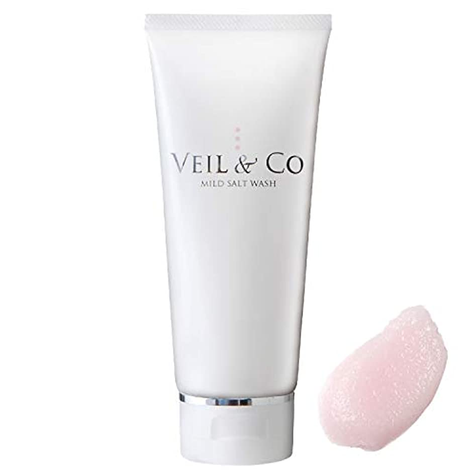 バルコニー群がるブルーベル【VEIL&Co】ベールアンドコー 毛穴専用マイルドソルトウォッシュ(洗顔料) 150g