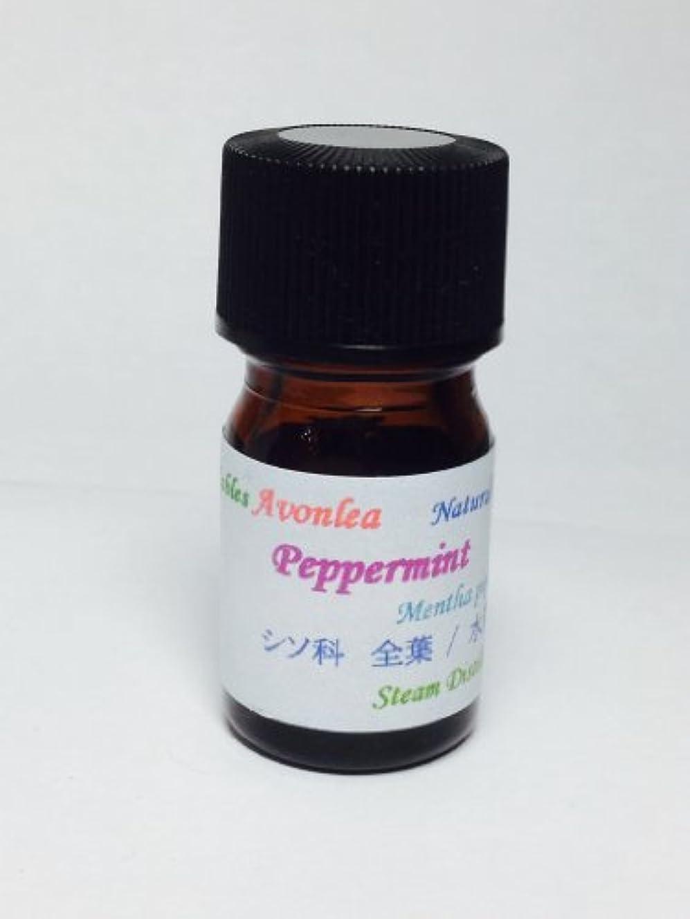 疾患意味のある呼び起こすペパーミント エッセンシャルオイル 高級精油 5ml