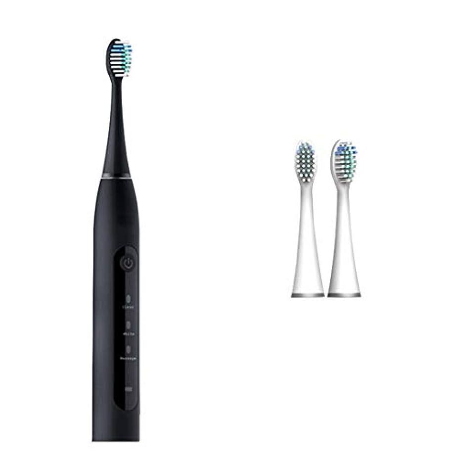 真実にエンドテーブル変位ソニック電動歯ブラシ、IP7防水インテリジェント?タイミング無線誘導充電、ソニッククリーニング、抗菌ホワイトニング (Color : Black)