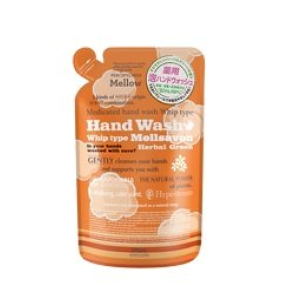 環境保護主義者取り替える豆腐メルサボン ハンドウォッシュホイップ ハーバルグリーン詰替