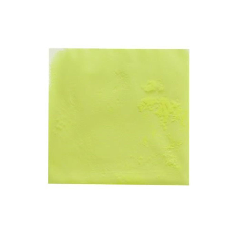 もっと葡萄子犬ピカエース ネイル用パウダー ピカエース 夜光顔料 蓄光性 #105 レモン 3g アート材