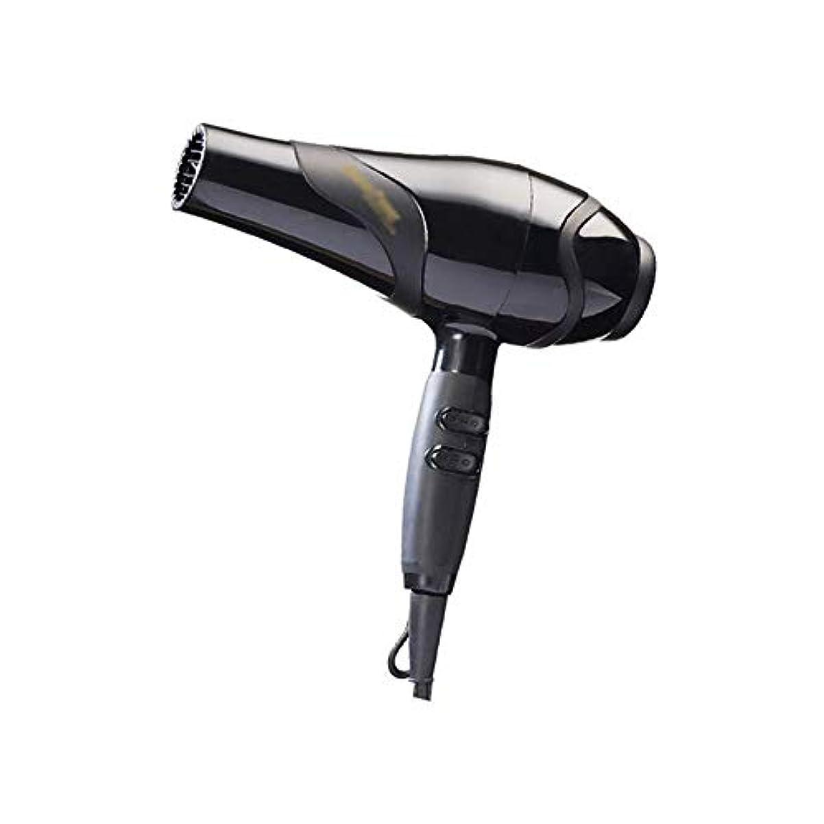帳面必要条件が欲しいZHANRIYA Salon Proヘアドライヤー、無料のヘアスタイリング、ディフューザーおよびコンセントレーターアタッチメント付き、2300W。 (色 : 黒)
