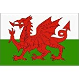 Wales National Flag 5ft x 3ft by Country [並行輸入品]