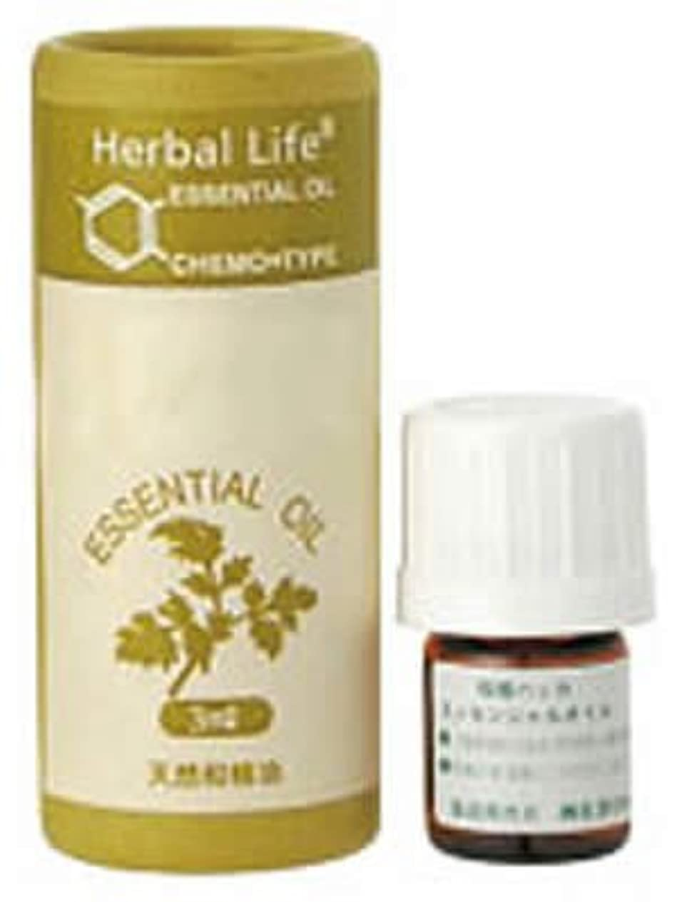 くぼみそれる光沢Herbal Life 薄荷(ハッカ) 3ml