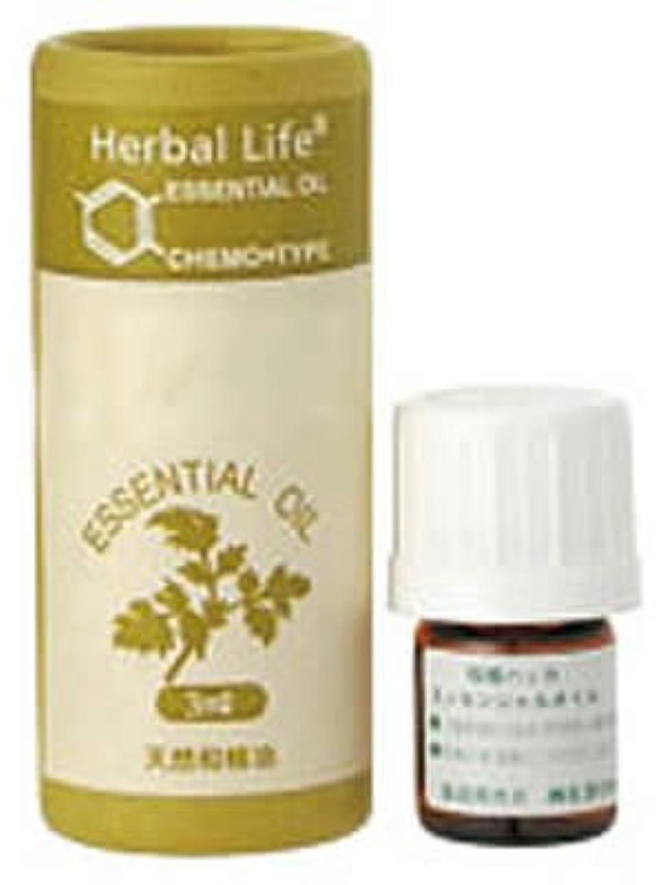 直接液化する仮定Herbal Life 薄荷(ハッカ) 3ml