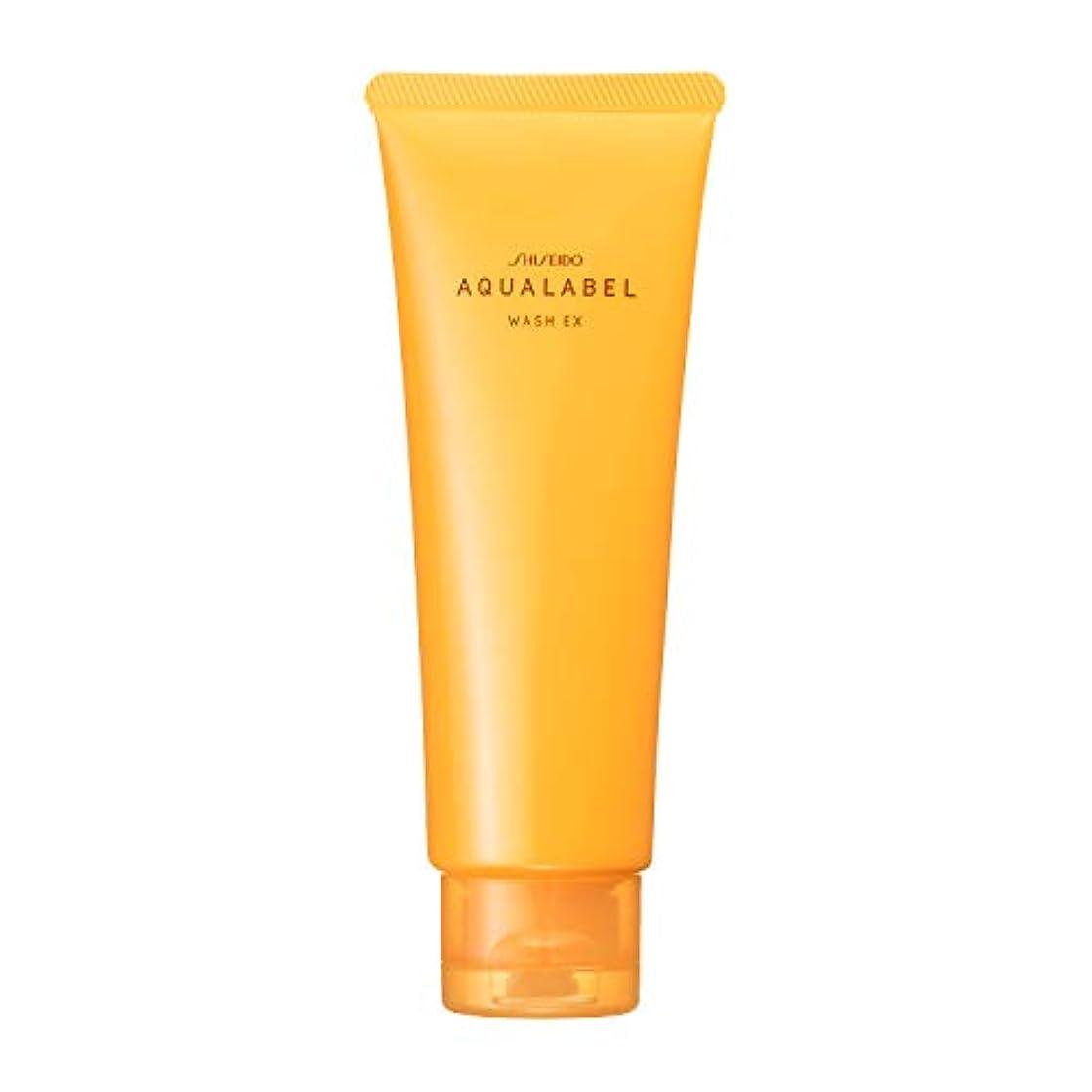 永遠の肌寒い酸化するアクアレーベル 豊潤泡洗顔フォーム 110g