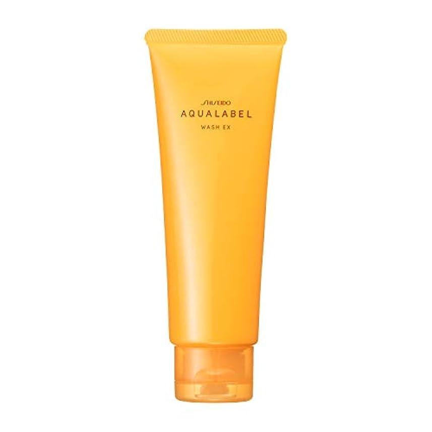 分解するダイアクリティカル立方体アクアレーベル 豊潤泡洗顔フォーム 110g