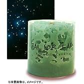 コーラルキャンドル 天河原(てぃんがーら) 彦星・アルタイル