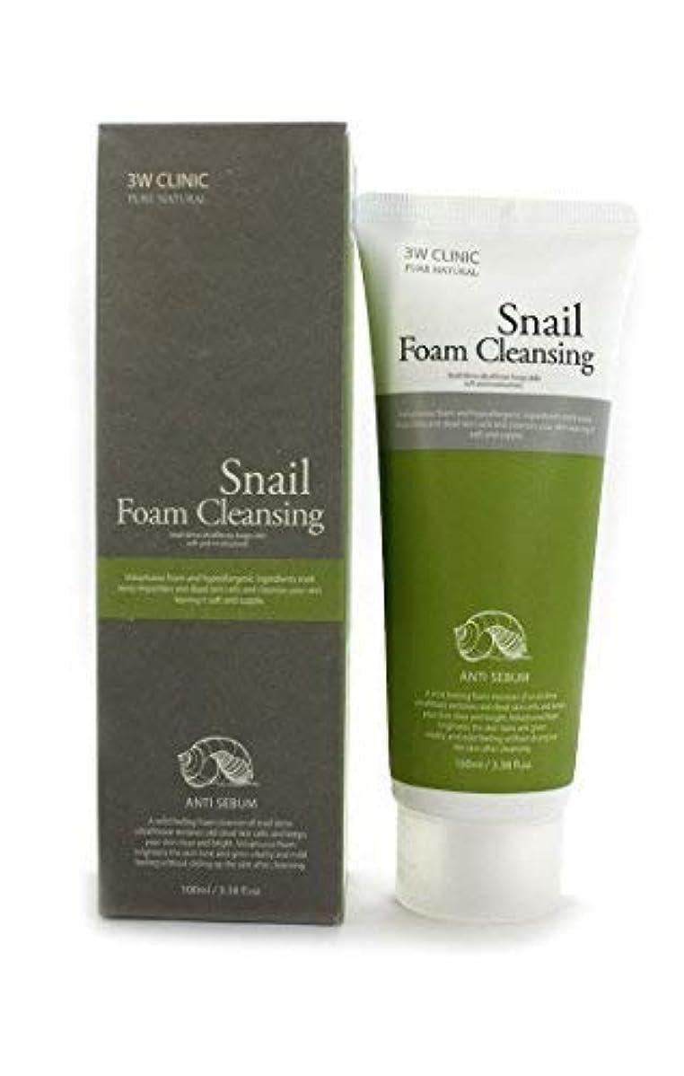 枯渇する吐き出す優勢Snail Foam Cleansing クリニック純粋な天然100Ml(3.38Fl。オズ) [並行輸入品]