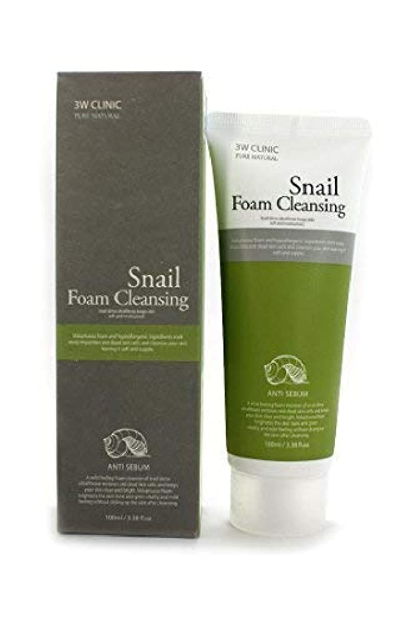 クッション労働ドライブSnail Foam Cleansing クリニック純粋な天然100Ml(3.38Fl。オズ) [並行輸入品]