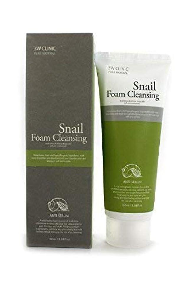 頭痛ファシズム褒賞Snail Foam Cleansing クリニック純粋な天然100Ml(3.38Fl。オズ) [並行輸入品]