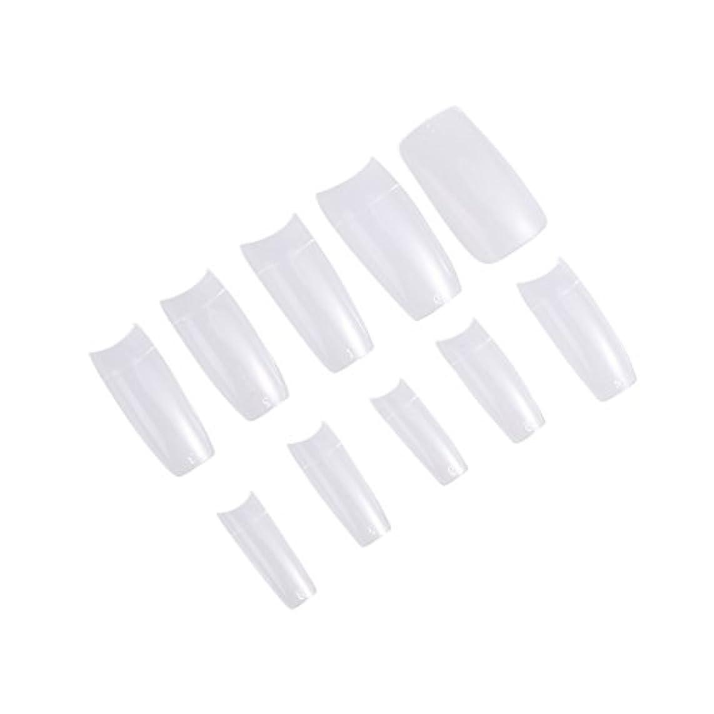 干渉するしっとり何十人もFrcolor ネイルチップ つけ爪 無地 手作りネイルチップ 透明 長さ 10別サイズ ネイルアート 500枚入 練習用 方形(透明)