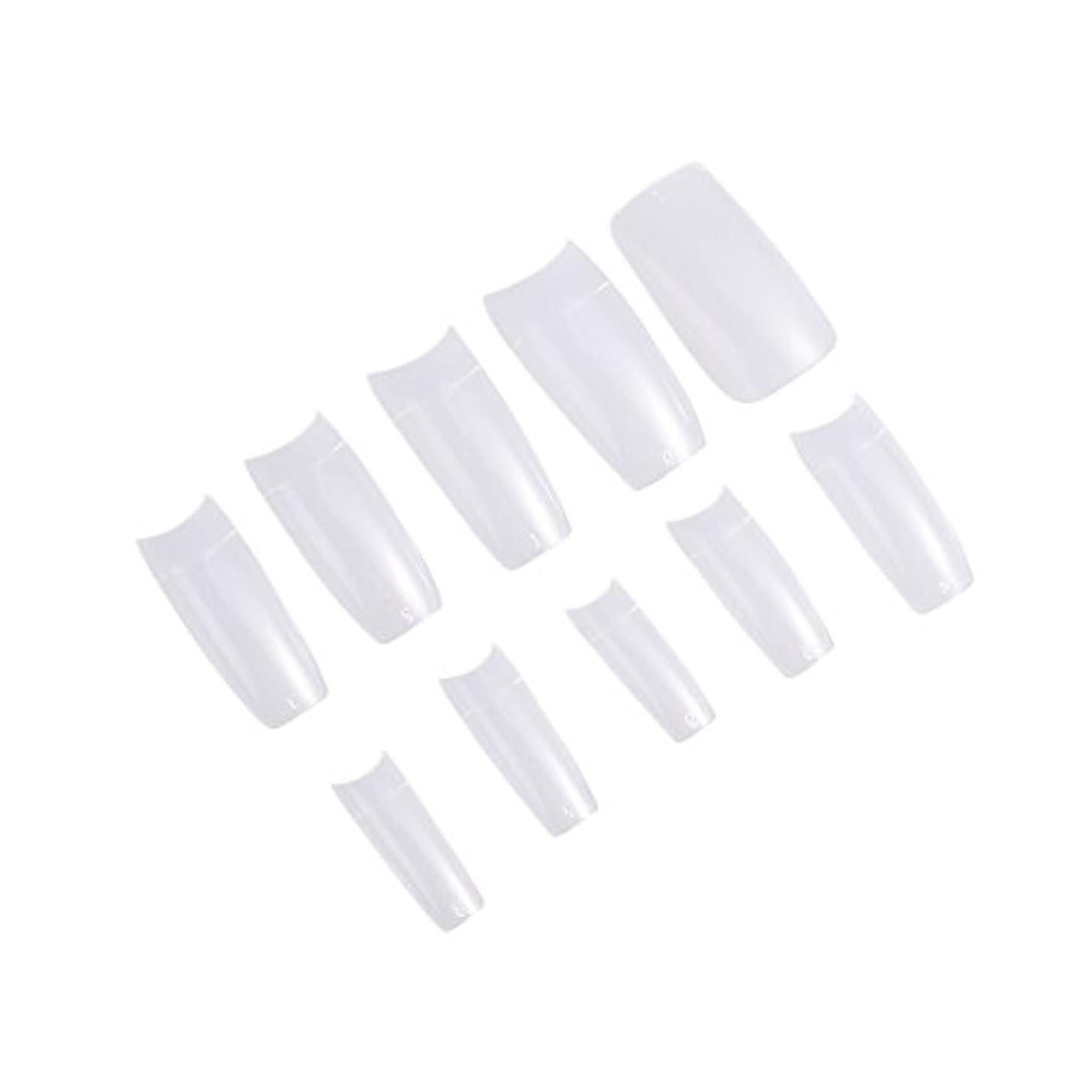 グラマープランター利得Frcolor ネイルチップ つけ爪 無地 手作りネイルチップ 透明 長さ 10別サイズ ネイルアート 500枚入 練習用 方形(透明)