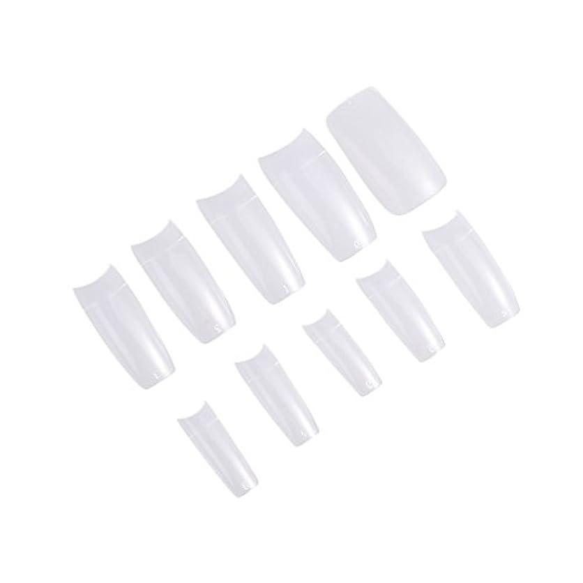 抱擁立ち寄る没頭するFrcolor ネイルチップ つけ爪 無地 手作りネイルチップ 透明 長さ 10別サイズ ネイルアート 500枚入 練習用 方形(透明)