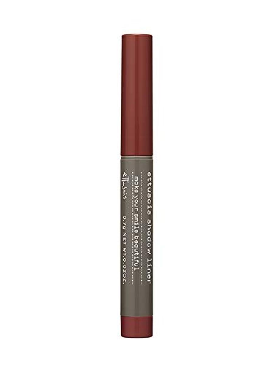 ドアミラー塗抹キャラバンエテュセ シャドウライナー BR1(モカブラウン) 0.7g