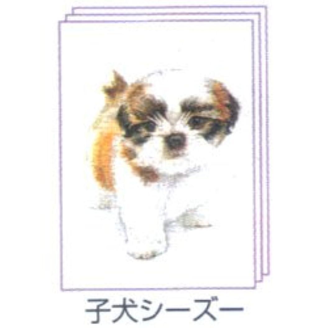 レキシコン省略する懲戒塗り絵物語 犬たち猫たち編 ※子犬 シーズー