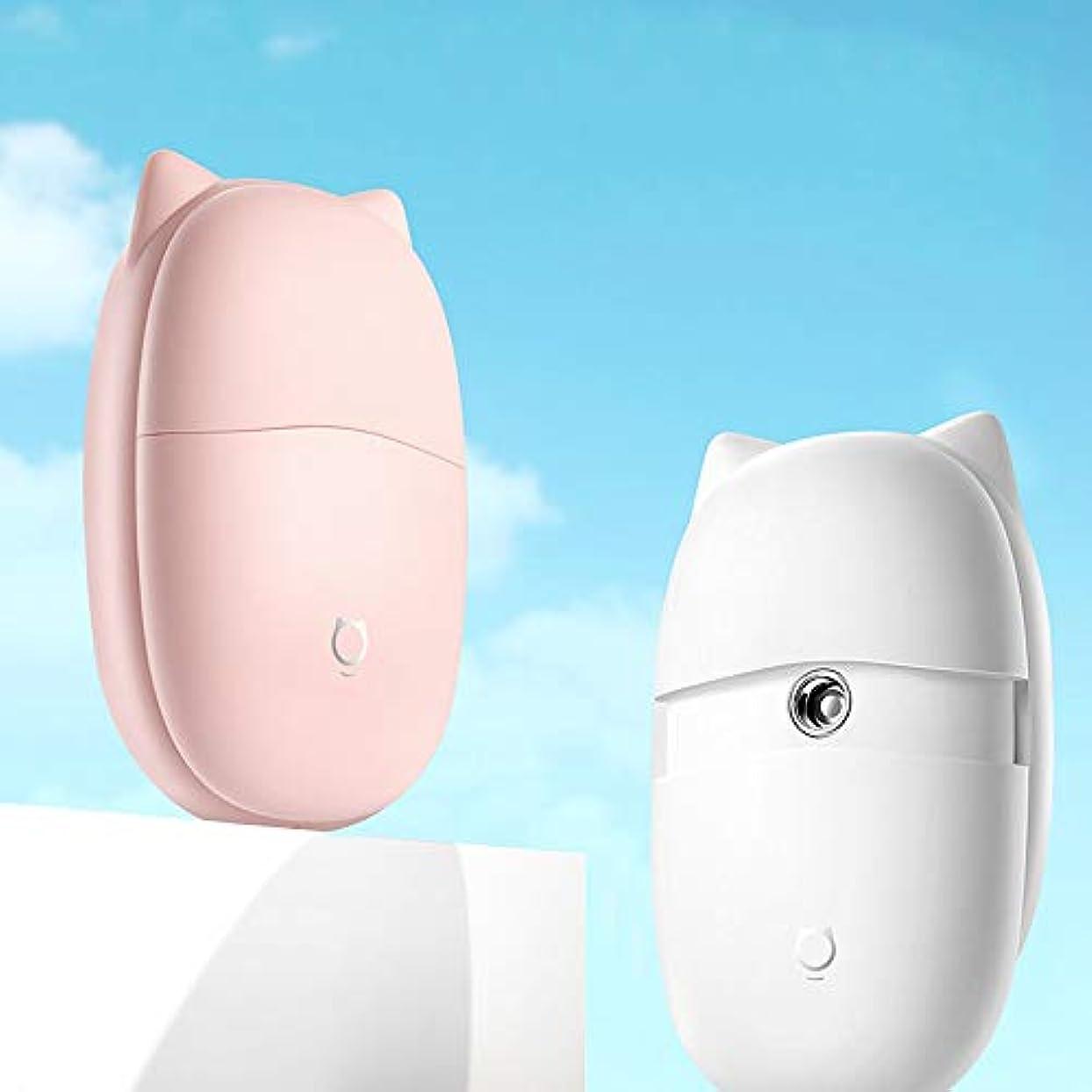腹痛下位連邦ZXF 新しいミニハンドヘルドポータブルナノスプレースチームフェイスフェイシャル美容加湿器スプレーウサギ猫水道メーター美容機器ホワイトピンク 滑らかである (色 : Pink)