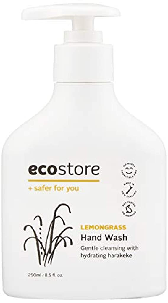 北極圏パールシリアルecostore(エコストア) ハンドウォッシュ 【レモングラス】 250ml 液体タイプ